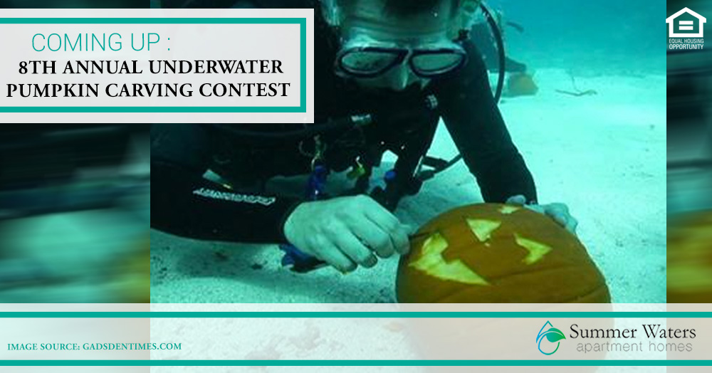 Underwater Pumpkin Carving Contest