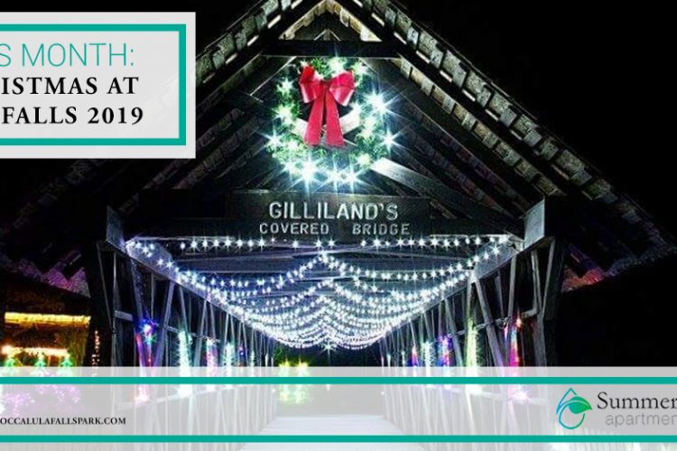 This Month: Christmas at the Falls 2019