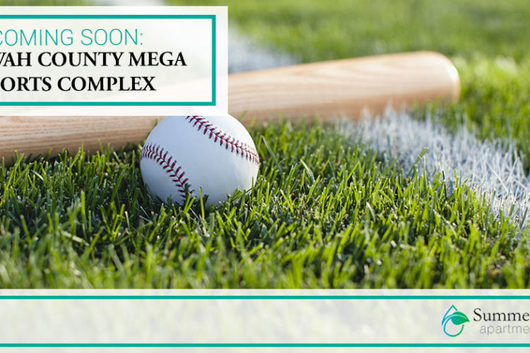 Coming Soon: Etowah County Mega Sports Complex