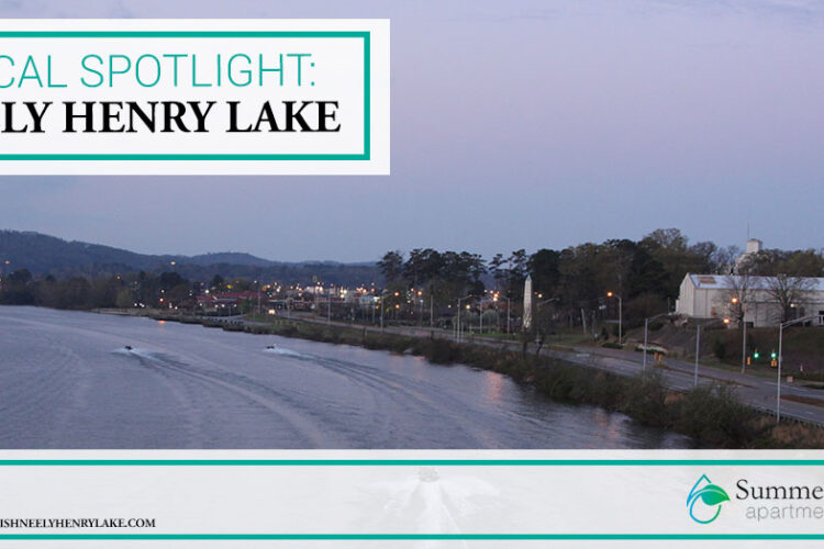 Local Spotlight: Neely Henry Lake
