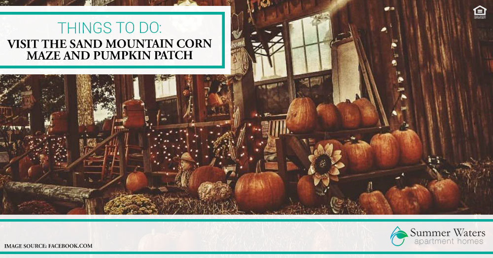 Things to Do: Visit the Sand Mountain Corn Maze and Pumpkin Patch